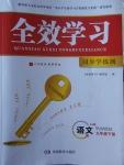 2018年全效学习九年级语文下册人教版湖南教育出版社