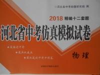 2018年河北省中考仿真模拟试卷物理