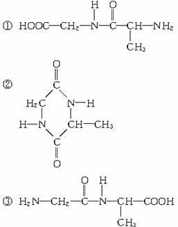 丙氨酸与甘氨酸以1:1(分子数之比)缩合时,所得产物的结构简式可能是