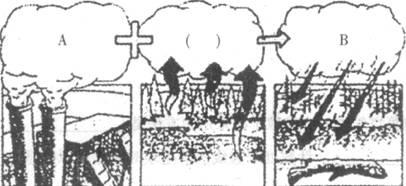 形成酸雨的原因之一_下图是酸雨的形成示意图,看图回答