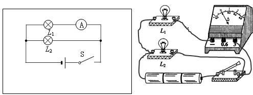 在方框中画出灯泡l1和灯泡l2并联.电流表测灯泡l1电流