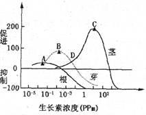 下面为体液免疫过程.据图回答问题 1 图中属于体液免疫的反应阶段的