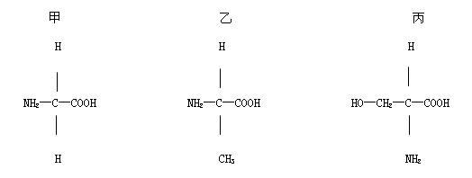 (07重庆市直属重点中学联考)下面是三种组成蛋白质的氨基酸的结构式图片