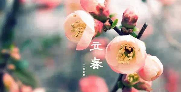 赞扬春天的成语大全