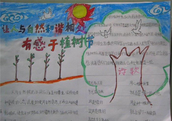 植树节手抄报大全六年级