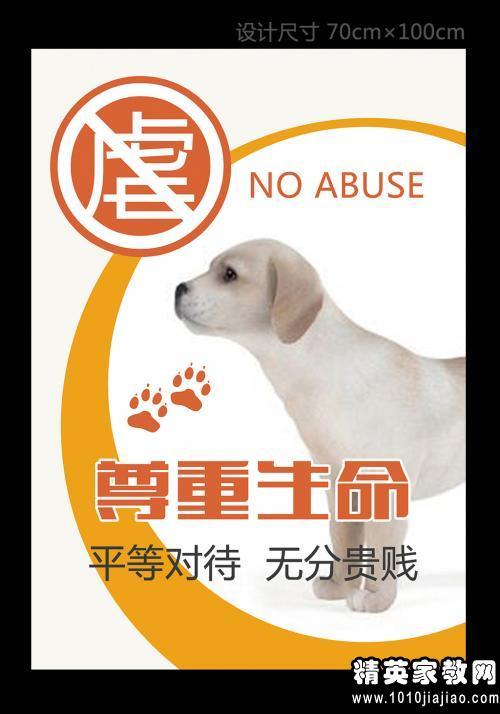 保护动物英文宣传语 | 广告词——精英家教网——