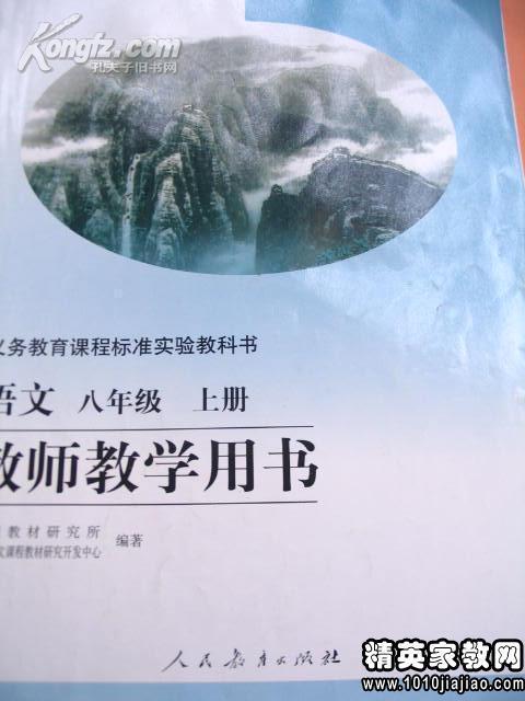 八课件年级《藤野先生》说课稿模板·队语文童年阳·骆驼冬图片