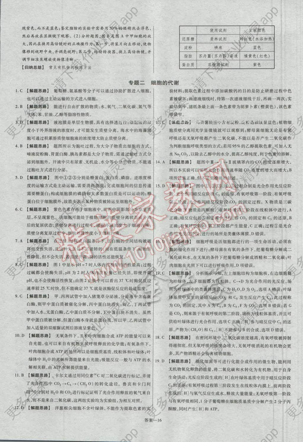 金考卷活页题选高中生物必修1人教版 参考答案第16页图片