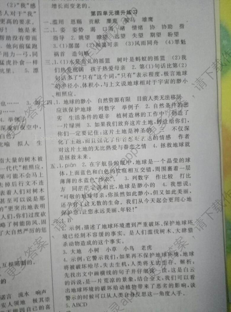 2016年七彩课堂六年级语文上册人教版河北专版答案