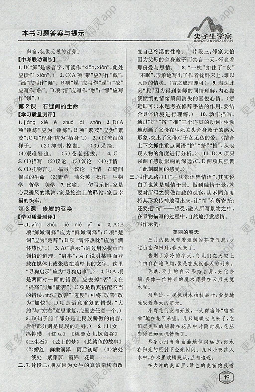 2018年尖子生学案九年级语文下册语文版图片