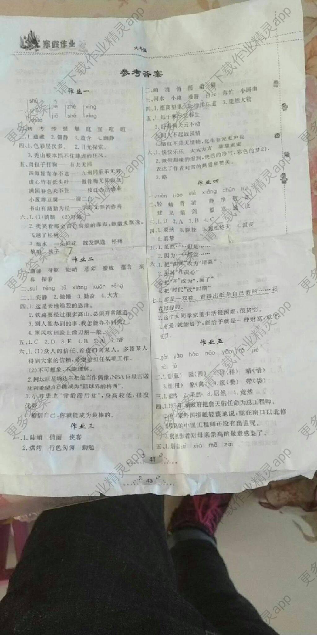六年级寒假语文作业