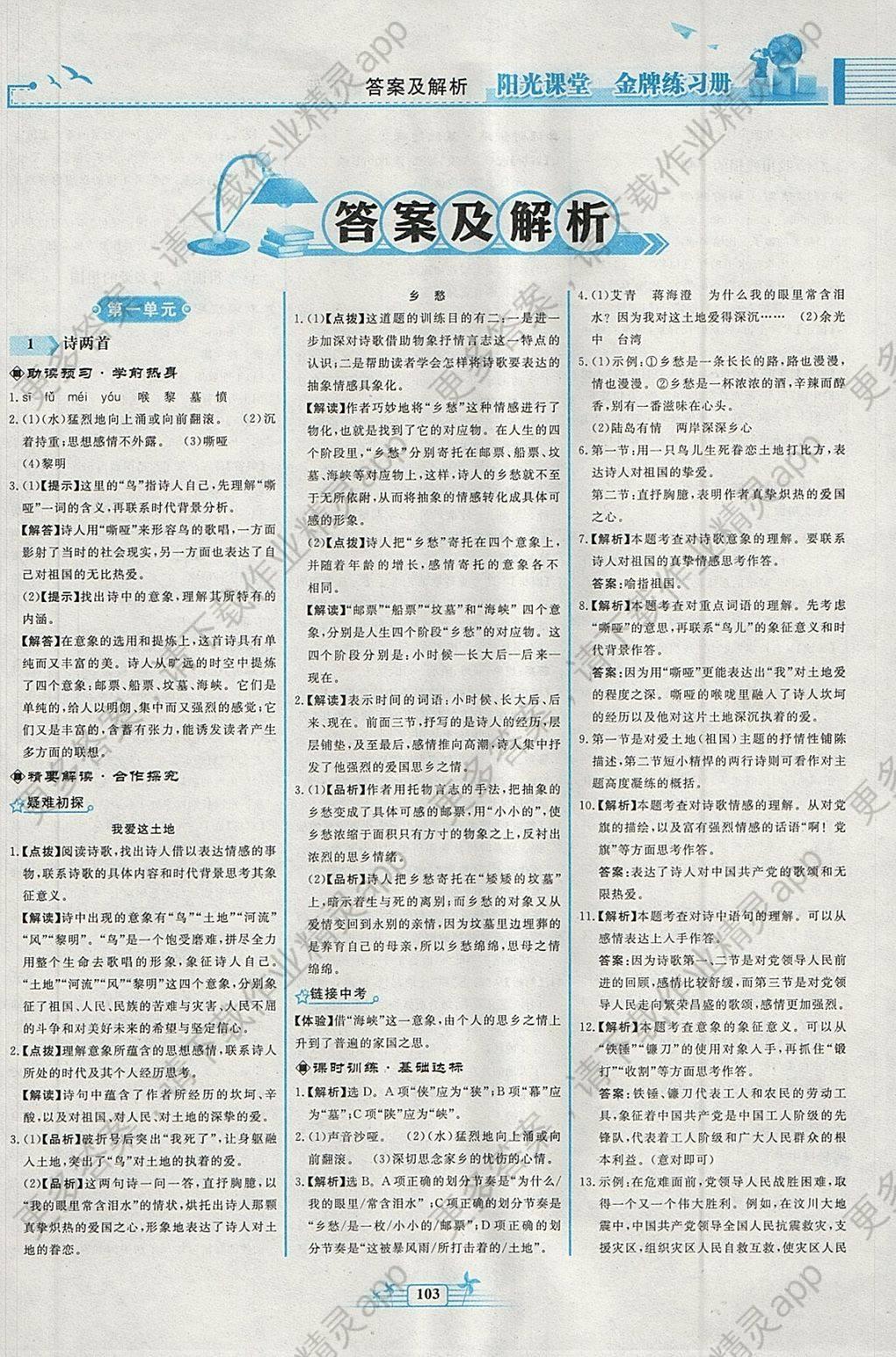 2018年阳光课堂金牌练习册九年级语文下册人教版答案图片
