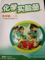 2016年化学实验册九年级上册人教版答案