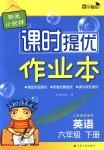 2018年阳光小伙伴课时提优作业本六年级英语下册江苏版