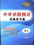 2018年天利38套中考试题精选九年级语文青海省专版