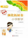 2019年强化拓展卷小学数学六年级下册苏教版
