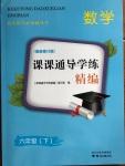 2020年课课通导学练精编六年级数学下册人教版