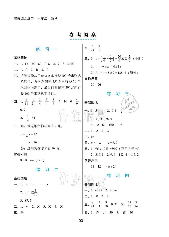 2021年寒假综合练习六年级数学人教版参考答案第1页