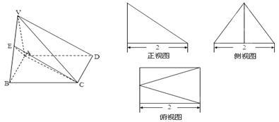 如图所示的多面体.它的正视图为直角三角形.侧视图为正三角形.俯视图图片