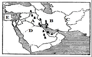 埃及的农耕区.人口和城市主要分布在A.地中海沿岸B.尼罗河谷地河三角