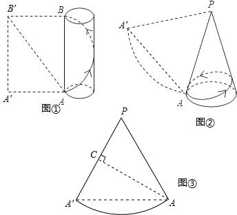 高为4的圆柱体和它的侧面展开图.AB是圆柱的一条母线.一只蚂蚁从A图片