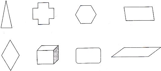 1 画两个不一样的平行四边形.