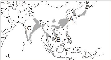 亚洲地形囹�b���_(2)从气候上看,a,b,c三地水热资源丰富;从地形上看,亚洲水稻田多分布