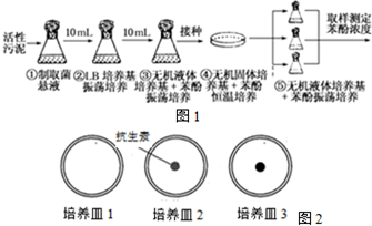 17.回答下列v苯酚微生物的苯酚.Ⅰ问题(C6H5Oadvisor教程图片
