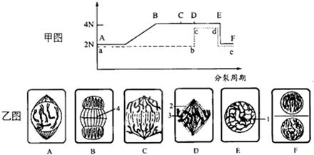 6.细胞内20种氨基酸在分子结构上的主要区别是( )