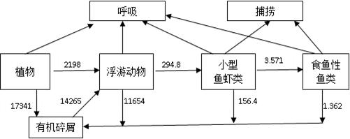 """2009年10月,我国自主研发的转基因抗虫水稻""""华恢1号""""获得农业部颁发的"""