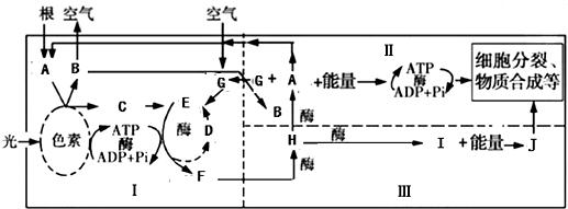 电路 电路图 电子 原理图 517_191