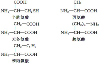 肽键,b.r基(从氨基酸结构通式的角度分析).