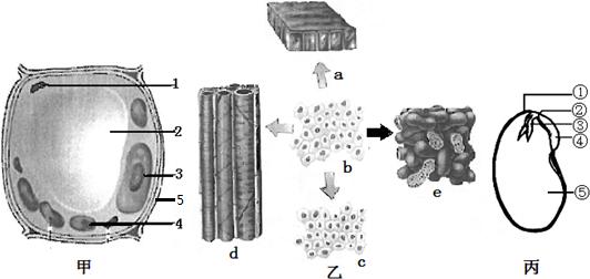 13.央视《每周质量报告》曝光了一种叫富氧水的高价饮用水,它是以饮用水为基质,加压充入氧气制得. 节目中对富氧水有两种截然不同的观点: 观点一:富氧水富含氧分子,活性强、易吸收.喝水后氧气通过胃肠绒毛细胞膜直接进入细胞,能有效补充体内的氧,在细胞内分解各种营养物质产生能量. 观点二:观点一违背科学常识,是概念炒作,在忽悠消费者. (1)石田教授曾对富氧水的效果进行研究.他以10名学生为对象,让学生在不同时间分别饮用350毫升普通水和富氧水,但不告诉学生喝的是哪一种水.学生喝完水后被要求运