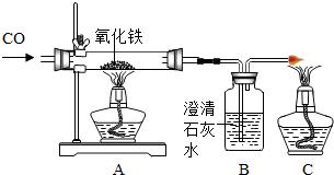 草甘膦的原理_湖南农业大学阐明植物代谢草甘膦并产生抗药性的分子机理