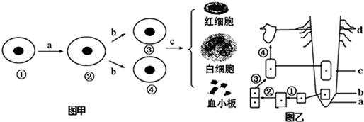 如图是某生物的细胞亚显微结构示意图,请据图回答(序号和名称全对才给