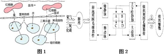 电路 电路图 电子 原理图 551_182
