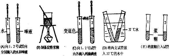 一朵桃花中,与果实和种子的形成有直接关系的结构是( )