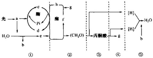 电路 电路图 电子 原理图 519_196