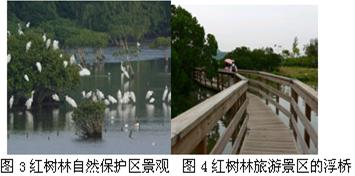 4.造成该环境问题的原因是 A.过度砍伐森林B.过量引水灌溉C.过度开发沼泽D.城市化过度发展 精英家教网图片