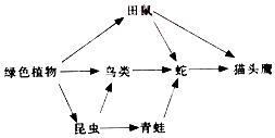 诱虫器采集法的原理是_关于图像采集器件的原理和供电方法的分析和介绍