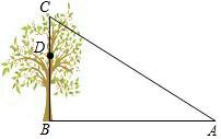 如图. 1 2.那么 2与 frac 1 2 的关系是互余. 题目和参考答案 精英家教网