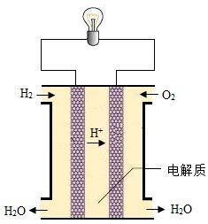 如图为一种新型电池-氢氧燃料电池的示意图.请回答下列问题.