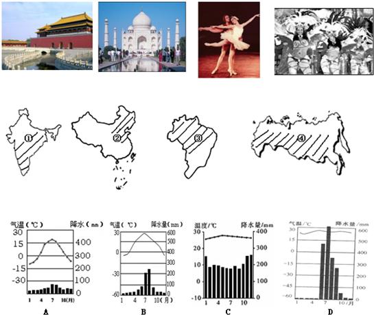 金砖四国 (巴西.俄罗斯.印度.中国)是最具潜力的