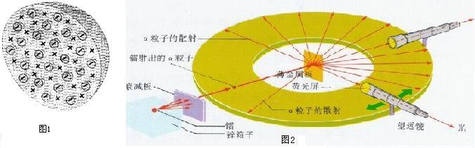 解答:解:(1)大部分a粒子几乎不受任何阻挡地穿过金箔,不改变原来的运动方向,说明原子核很小.一小部分粒子改变了原来的运动方向,说明原子核带正电. 因而汤姆生提出了一个被称为西瓜式结构的原子结构模型,电子就像西瓜子一样镶嵌在带正电的西瓜瓤中的观点存在的缺陷. 原子是由居于原子中心的带正电的原子核和核外电子构成,而非嵌着葡萄干的面包或不可再分的实心球体;原子的质量主要集中在原子核上. (2)卢瑟福的实验提出了带核的原子结构模型:原子是由原子核和核外电子构成. 故答案为: (1)否认了汤姆