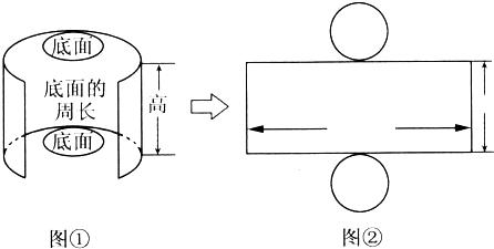 分别填入图②的圆柱侧面展开图中的合适位置 题目和参考答案 精英图片