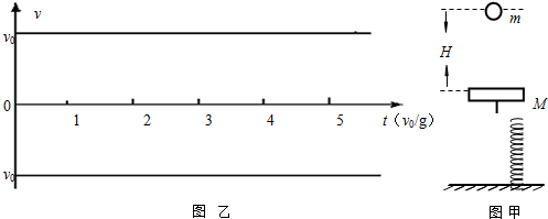 竖直放置在地面上,其上端固定有质量为m的钢板,处于静止状态,如图甲