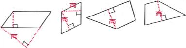 画出下列图形的高,其中平行四边形的高要画两条.图片