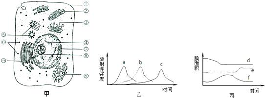 高中生物 题目详情  (1)该细胞中具有双层膜结构的细胞器是[]  .