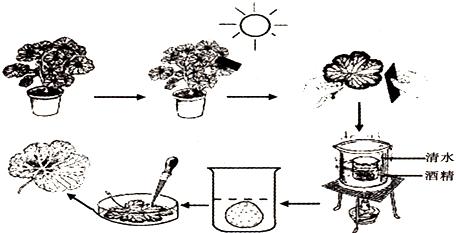 科学实验室器材简笔画
