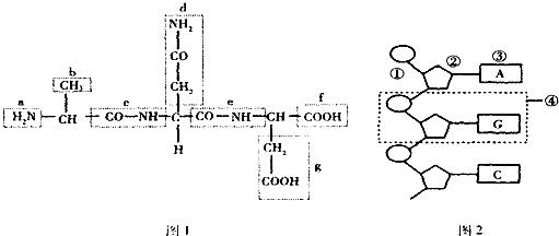 据图的化合物的结构简式回答下列问题